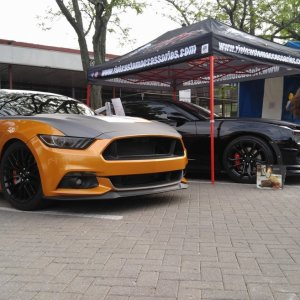 Crowd Killer Mustang Wrapped Layed Not Sprayed Brembo Ford
